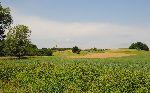 Pogled na kulturno krajino (foto: M.Podletnik)