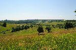 Mozaična krajina s travniki, njivami in mejicami (foto: M.Podletnik)