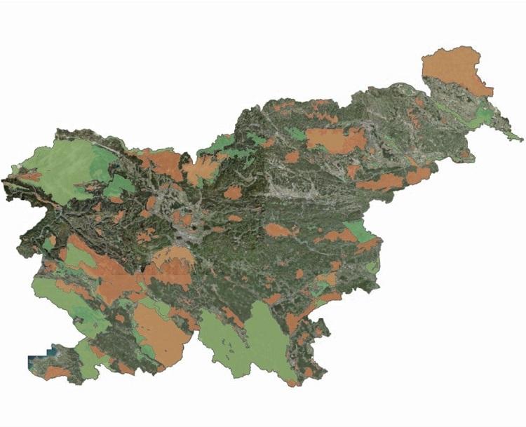 Zemljevid območij Natura 2000 (vir: Atlas okolja)